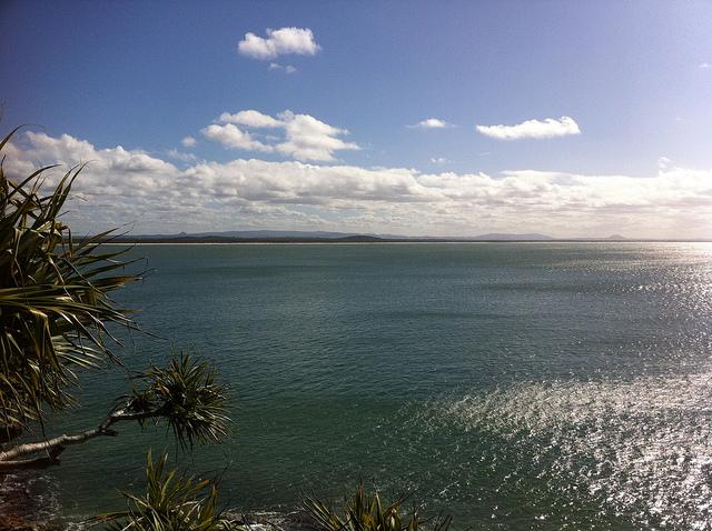 Bilgola sea view